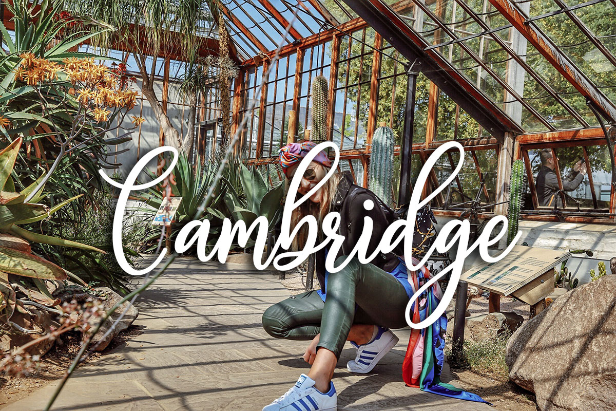 VIDEO – Una Semana De Estudio En Cambridge, Inglaterra